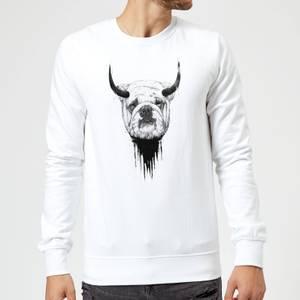 Balazs Solti English Bulldog Sweatshirt - White