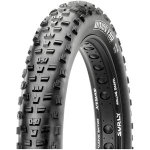 Maxxis Minion FBR Folding EXO TR Tire