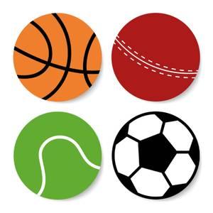Sports Balls Coaster Set