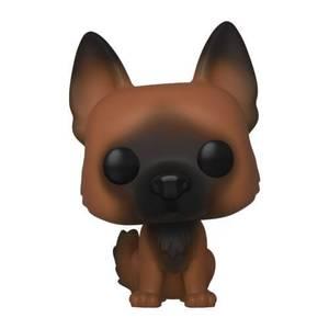 Figurine Pop! Dog - The Walking Dead