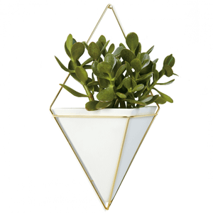 Umbra Trigg Wall Vessel - Large - White Brass