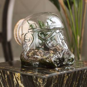 Star Wars Original Stormtrooper Terrarium