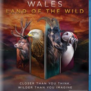 Wales: Land of the Wild