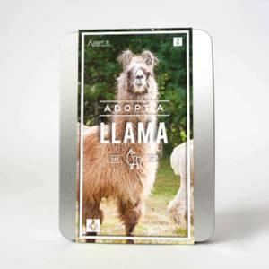 Adopt a Llama Gift Set