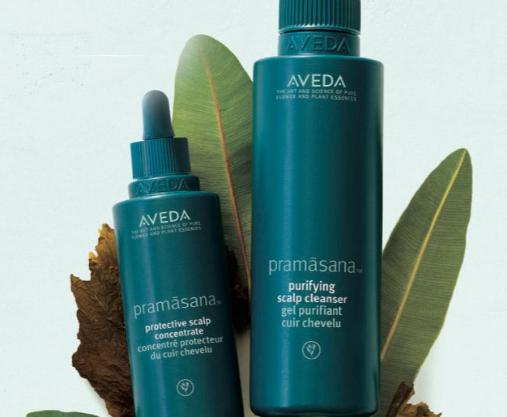 Aveda scalp treatments